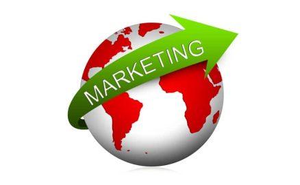 American Marketing Translation
