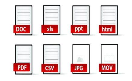 Latvian Document Translation