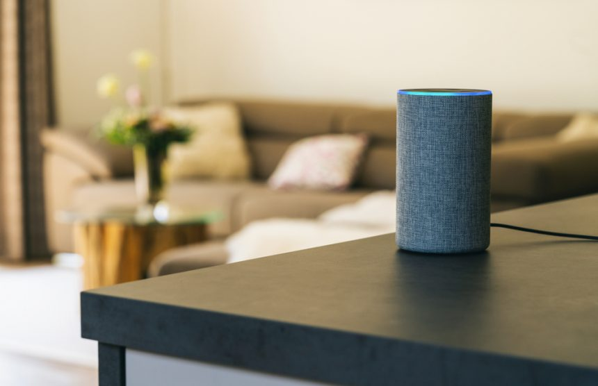 Is Your Brand Ready for Voice Ecommerce?